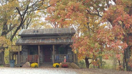 Elizabethtown, IL: Twin Oaks Log cabin in the fall