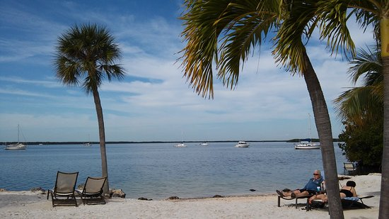 Hampton Inn Key Largo: beach behind hotel