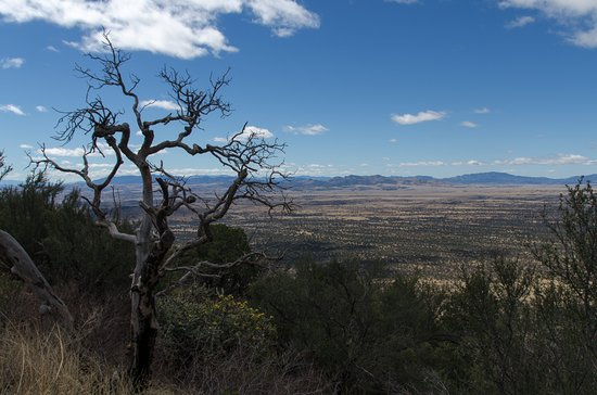 Hereford, AZ: View from Montezuma Pass looking Southwest