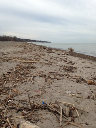 Mentor, OH: Typical winter beach scene