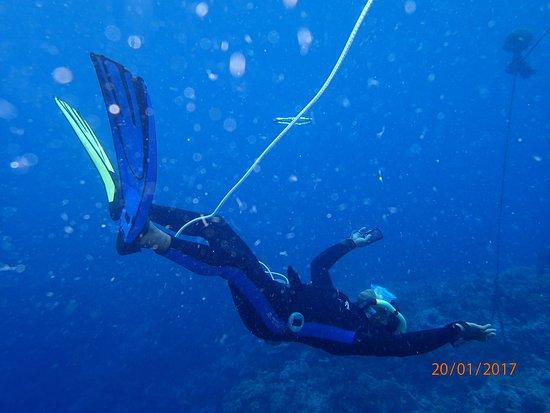 Poindimie, Nueva Caledonia: photo4.jpg