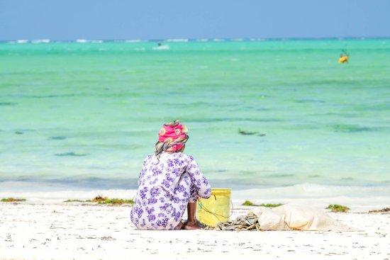 Hakuna Majiwe Beach Lodge afbeelding