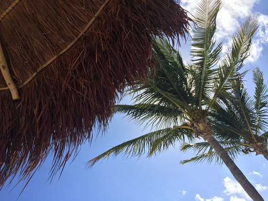 Excellence Playa Mujeres: The view from our beachfront daybed