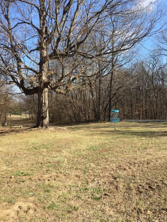 Antioch, TN: Disc Golf Course #10