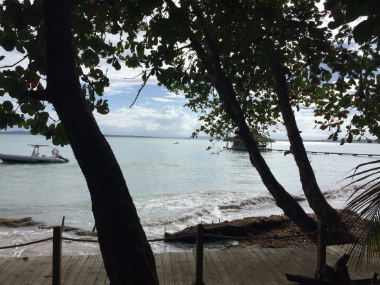 Isla Bastimentos, Panama: View from the porch of the Pelicano bungalow