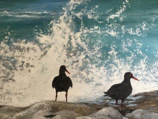 Bredasdorp, Afrika Selatan: De strandvogel black Oystercatcher