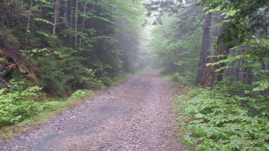 St. Martins, แคนาดา: A Lovely Walk!