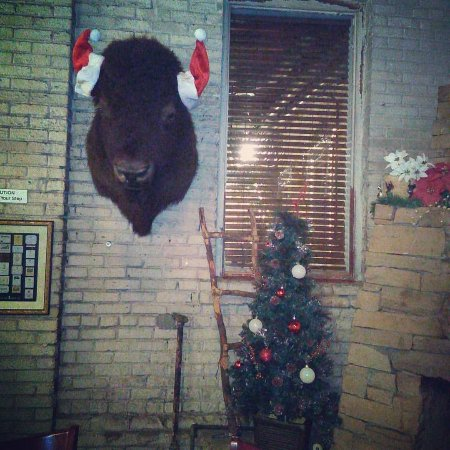 Kafe Kokopelli: This was back at Christmas but the buffalo is always there.