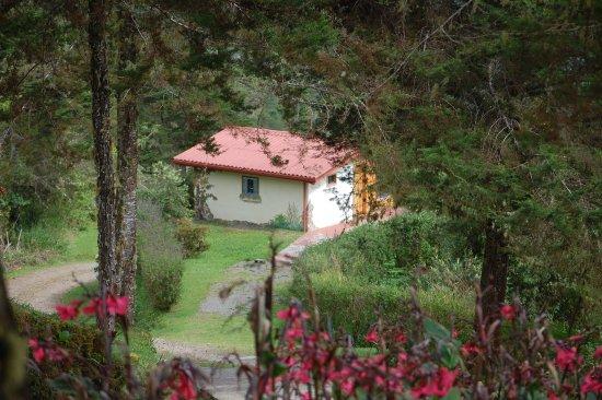 San Isidro de El General, Costa Rica: Hummingbird Cabin