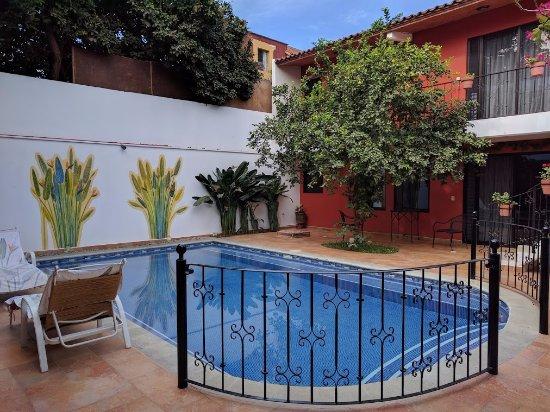 Oaxaca Ollin Picture