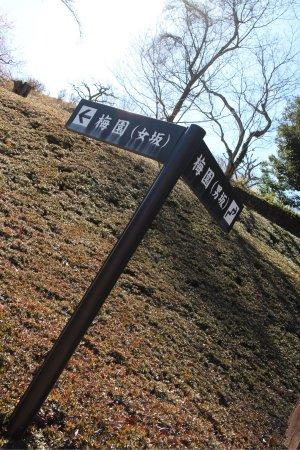 富士市, 静岡県, photo3.jpg