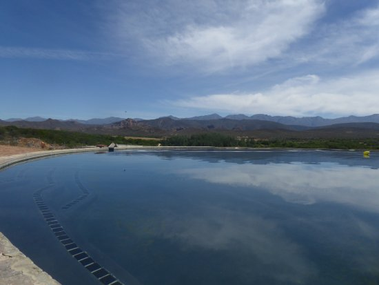 Rietfontein Ostrich Palace: Infinity Pool