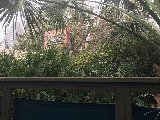Cappy's Restaurant: photo1.jpg