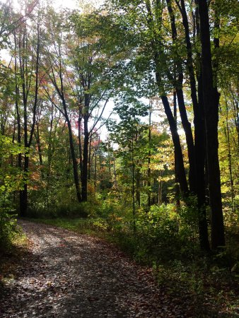 Concord, OH: Trail