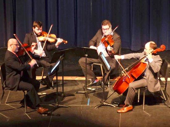 Marathon Shores, FL: Amernet String Quartet