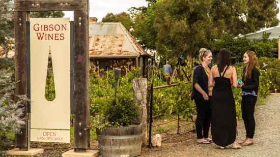 Barossa Valley, Australia: Welcome to Gibson's