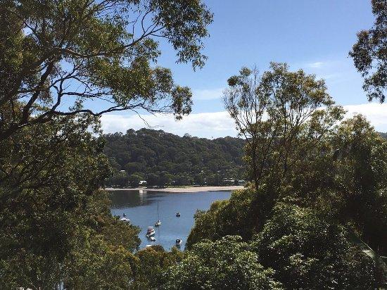Ruby Bay, New Zealand: photo3.jpg