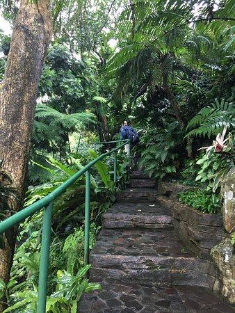 GG House - Happy Valley: Het guesthouse ligt net buiten Bogor aan de rand van een stromende rivier.