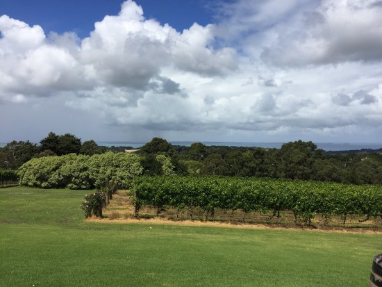 Red Hill, Australia: photo2.jpg