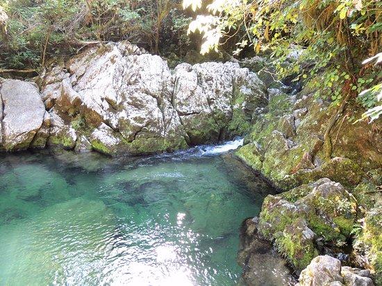 Kahurangi National Park, New Zealand: Rock pools for swimming.