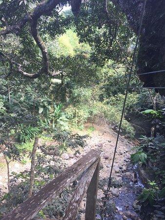 Dennery, St. Lucia: photo4.jpg