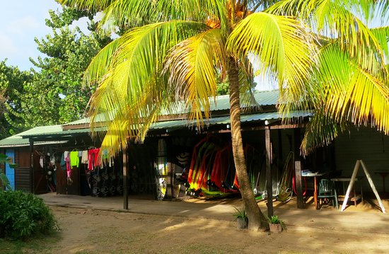 The Reef Beach Cafe: The Reef Windsurfing and Kiting, Vieux Fort, St. Lucia