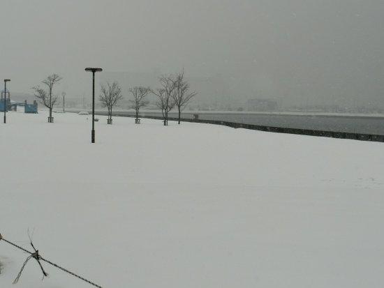 Chikko Rinkai Park