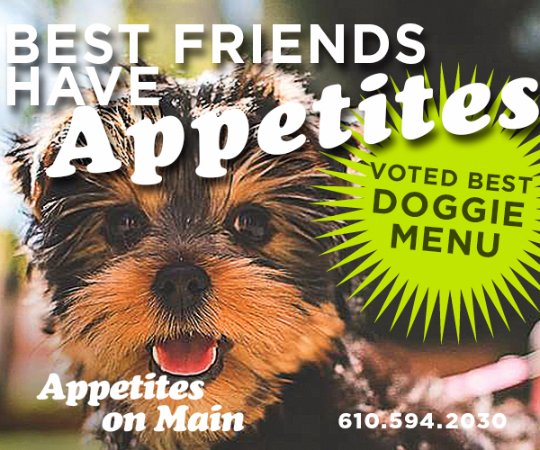 Exton, PA: Pet Friendly