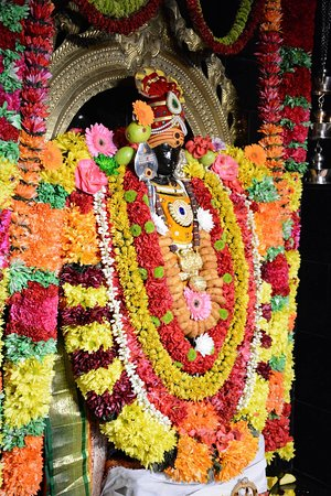 Concord, Californie : Beautiful Lord Murugan decorated with Flower dress