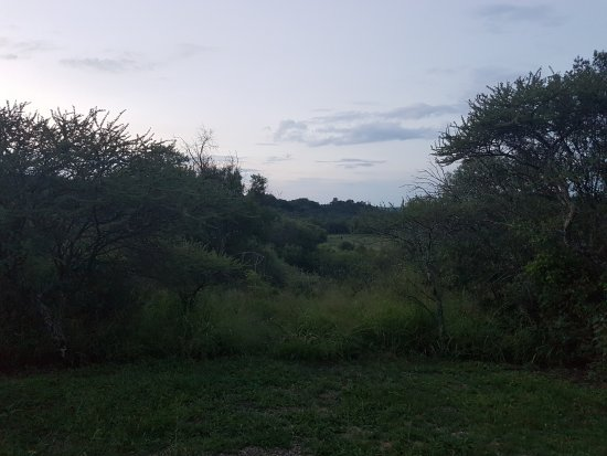 North-West Province, South Africa: View from cabin