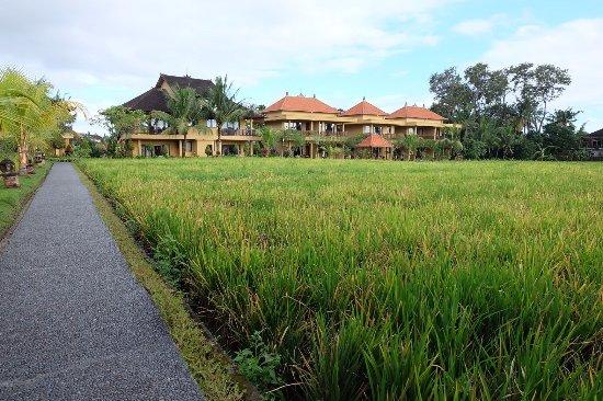 Sri Bungalows Photo