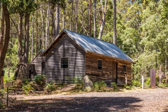 Branxholm, Australia: The Settlers Hut is set up for MTB riders or bush walkers. It has 6 single bunk beds.