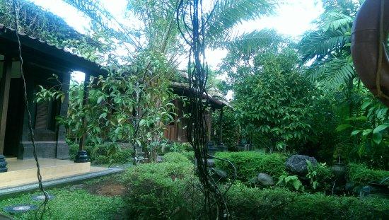 Bhuwana Ubud Hotel: IMAG1008_large.jpg