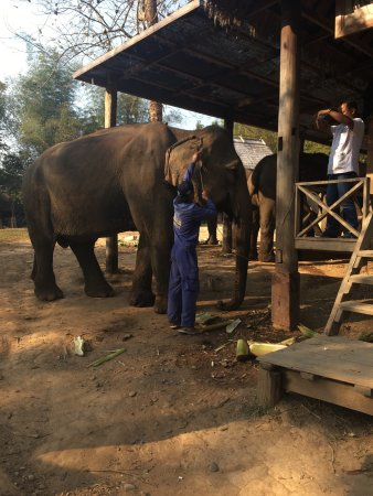 Ban Xieng Lom, Laos: photo7.jpg