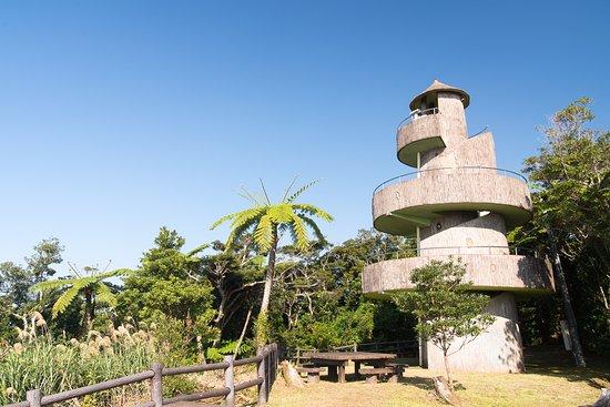 Kochiyama Observatory