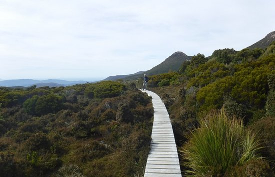Foto de Tasmanian Wilderness Experiences - Base Camp Tasmania