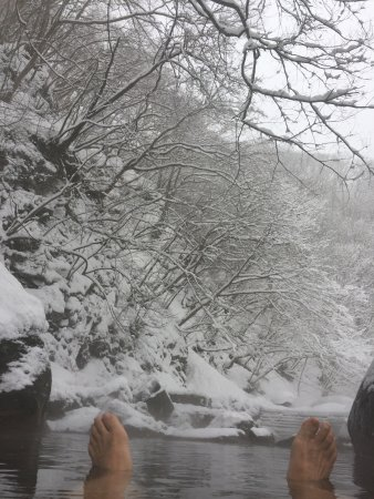 Nakanojo-machi, Japan: 木の下は落雪に要注意!
