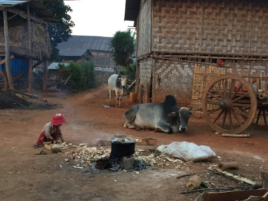 Kalaw, Myanmar: photo5.jpg