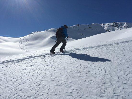 Pro Snowboarding