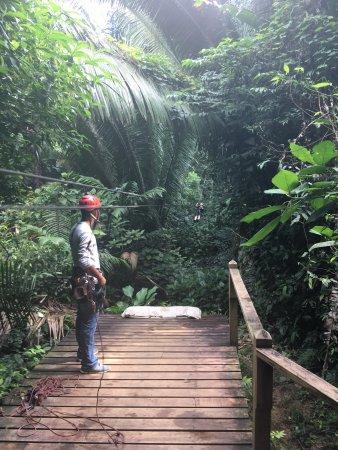 Bocawina Rainforest Resort & Adventures: photo0.jpg