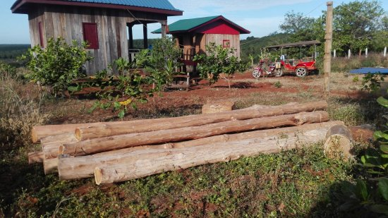 Banlung, Cambodia: Tree Trails Travel Lodge