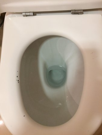 Brilliant Toilet Seat All Chipped So On First Glance It Looks Like Evergreenethics Interior Chair Design Evergreenethicsorg
