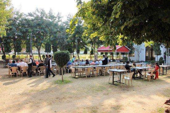 Narnaul, India: Gemütliches Essen im Freien.