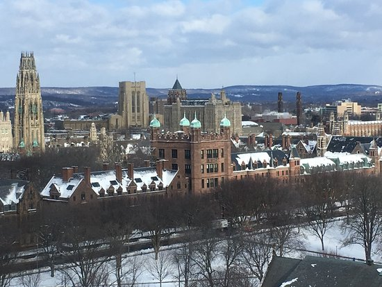 Yale University: Yale Old Campus in foreground and Harkness Tower behind