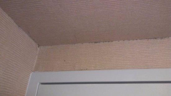 Timonium, Μέριλαντ: Mold/Mildew in bathroom