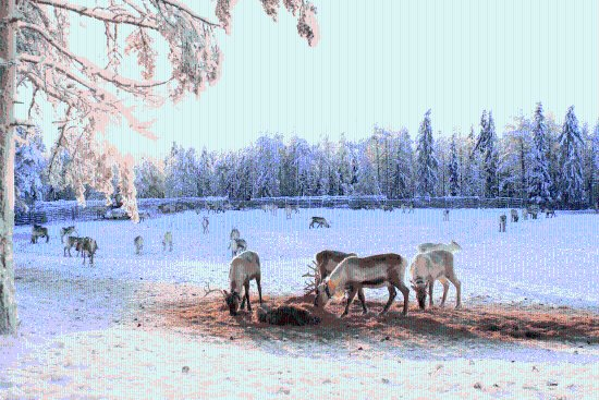 Kuusamo, Finland: getlstd_property_photo