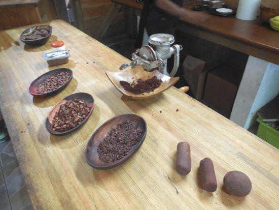 Pointe-Noire, Guadeloupe: Etapes de transformation du cacao