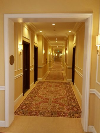 Westlake Village, CA: Gold hallway to our room