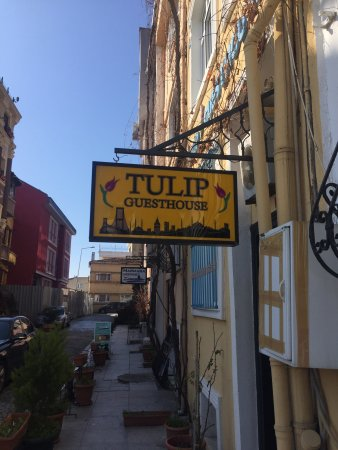 Tulip Guesthouse: photo0.jpg
