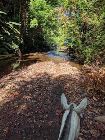 Casita Corcovado: Horse excursion